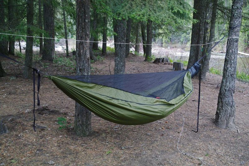 warbon  blackbird hammock camping hammocks research and review   andrew welch  rh   andrewwelch info